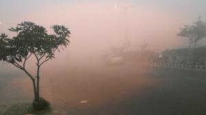Delhi Winter - 2012 December