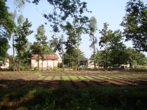 Lakali, Gujarath, India