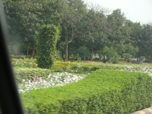 Hedges at the Shanthi Path, New Delhi