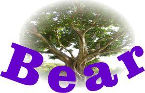 BearPent