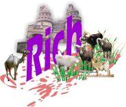 RichOT