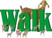 WalkPsalm