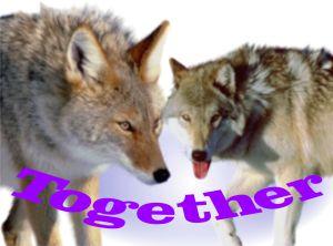 TogetherJobWise