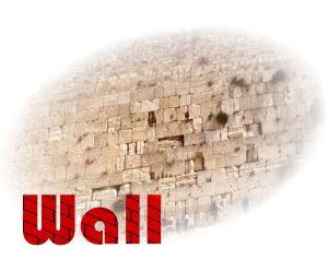 wallnt