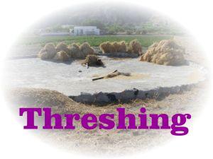 https://commons.wikimedia.org/wiki/File:Threshing_place,_Santorini,_Greece.jpg